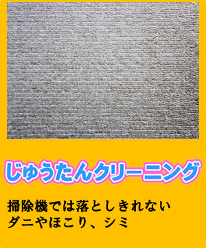 btn_carpet